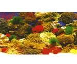 Декорация для аквариума Коралл