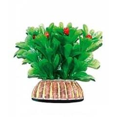 """Растение """"Тритон"""" 10см /1012/"""