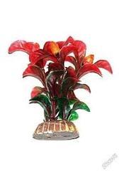 """Растение """"Тритон"""" 10 см. /1017/"""