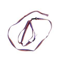 Комплект РАДУГА (поводок и шлейка)