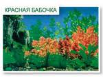 Декорация для аквариума КРАСНАЯ БАБОЧКА