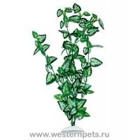 """Растение """"Тритон"""" 25 см. /7752/"""
