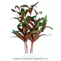 """Растение """"Тритон"""" 35 см. /7721/"""