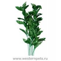 """Растение """"Тритон"""" 35 см. /7738/"""