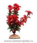"""Растение """"Тритон"""" 16 см. /1662/"""