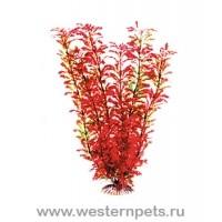 """Растение """"Тритон"""" 46 см. /7622/"""