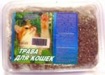 Травка для кошек в малом контейнере