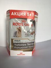 Royal Canin Пауч для собак породы Йоркширский терьер с 10 месяцев