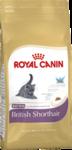 Корм для котят породы британской короткошерстной/ KITTEN BRITISH SHORTHAIR