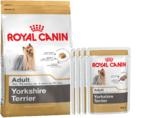 Royal Canin для Йоркширских терьеров