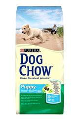 Dog Chow Puppy Junior Large Breed для щенков крупных пород /Индейка