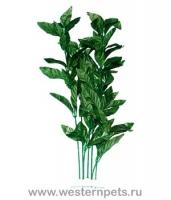 """Растение """"Тритон"""" 25 см. /7806/"""