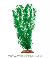 """Растение """"Тритон"""" 34 см. /3451/"""